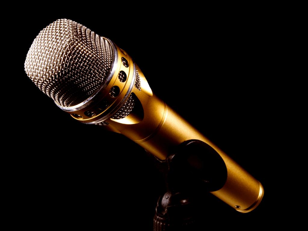 Zu sehen ist ein Mikrofon.
